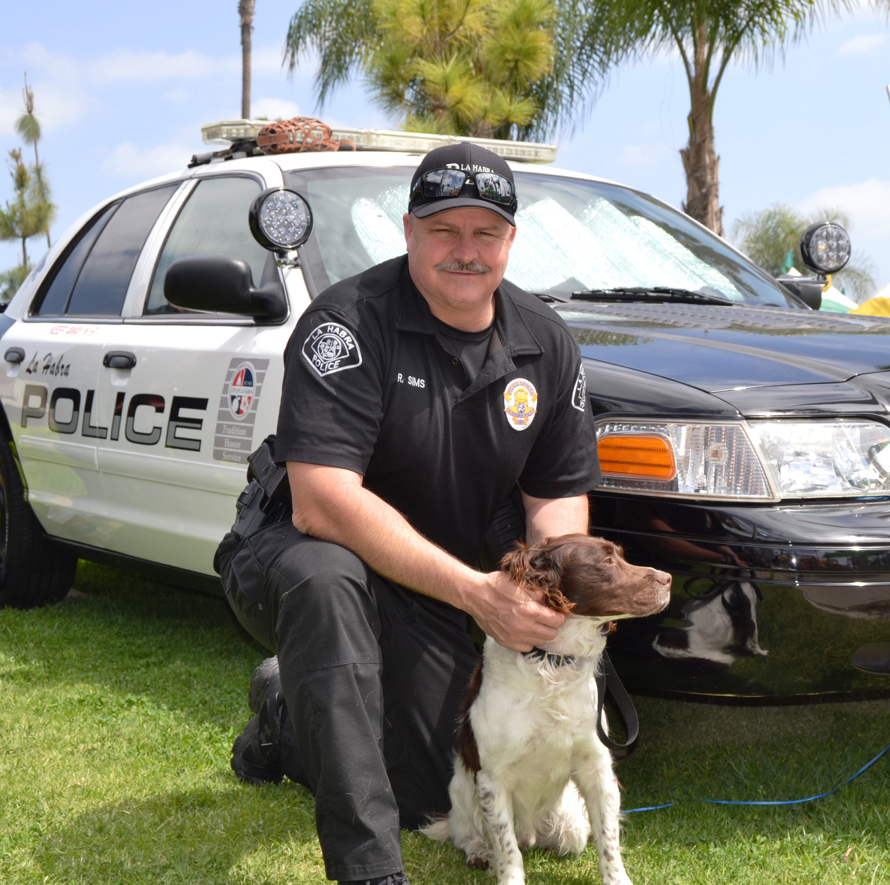 K9 Officer with Dog and police car