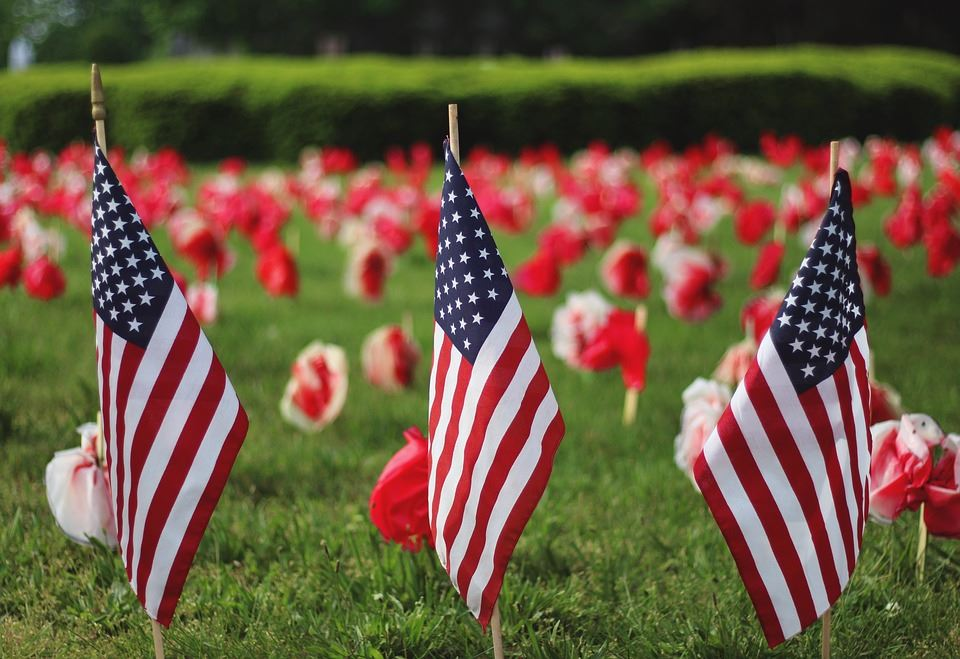 American Flags on display for Memorial Day